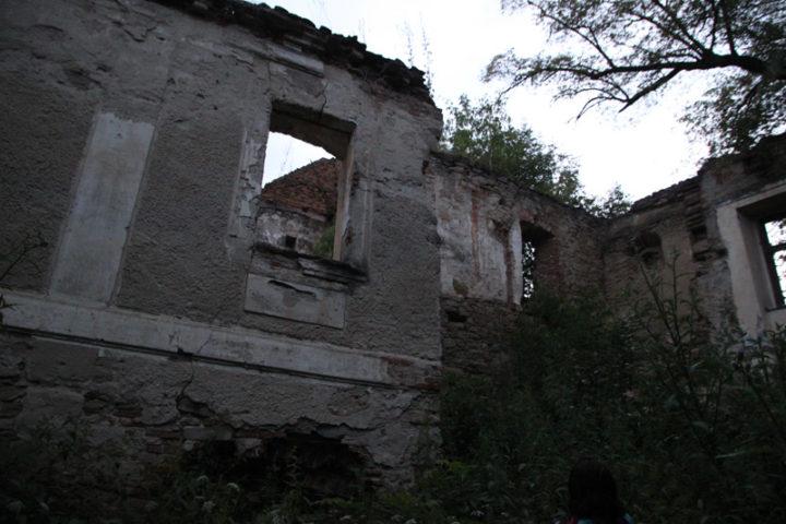Buia, castelul familiei Bolyai